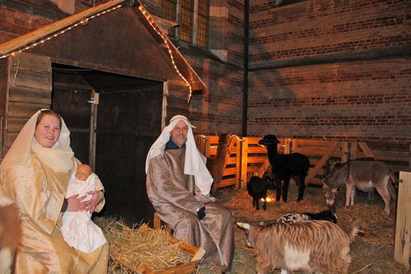 Levende kerststal fokkerij verkoop en verhuur van echte rendieren de mettemaat - Outs idee open voor levende ...